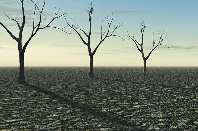 Barren Desert 1 size 640